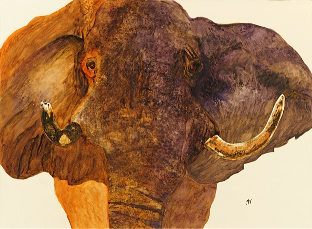 My painting of an elephant charging our car when we were on safari